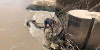 عملیات پاکسازی و رفع گرفتگی دریچه های سر دهانه نهر لشکر آباد۲